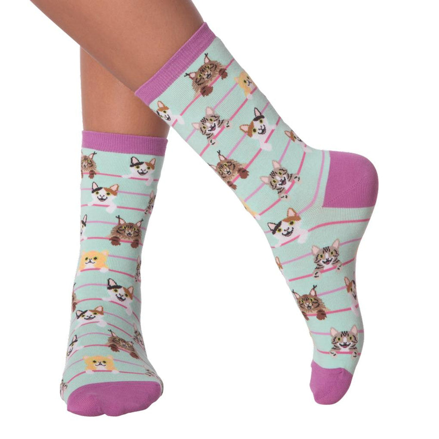 Women's Socks - Cats On A Wire