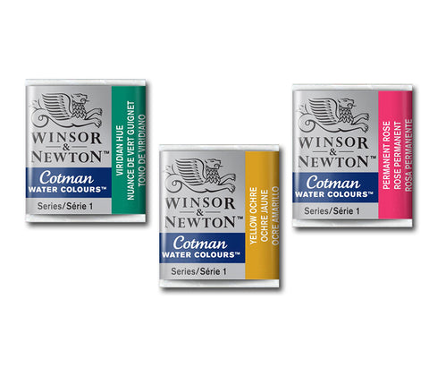 Winsor & Newton Cotman Watercolour Paint - 1/2 Pan