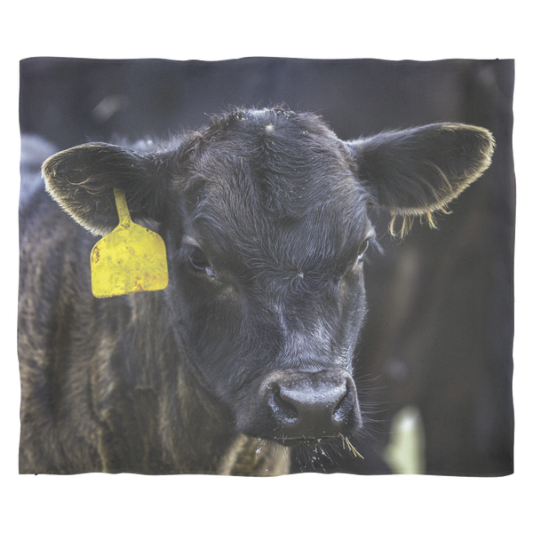 Black Angus Calf Fleece Blanket