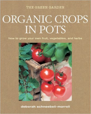Organic Crops in Pots - EarthCitizen