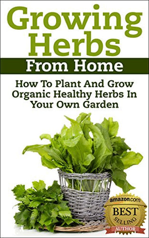 Growing Herbs From Home - EarthCitizen