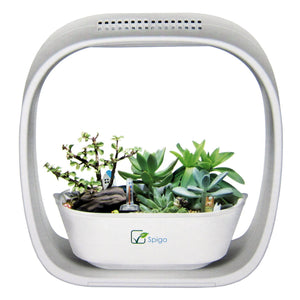 Spigo Indoor LED Light Grow Garden, Pearl White - EarthCitizen  - 1