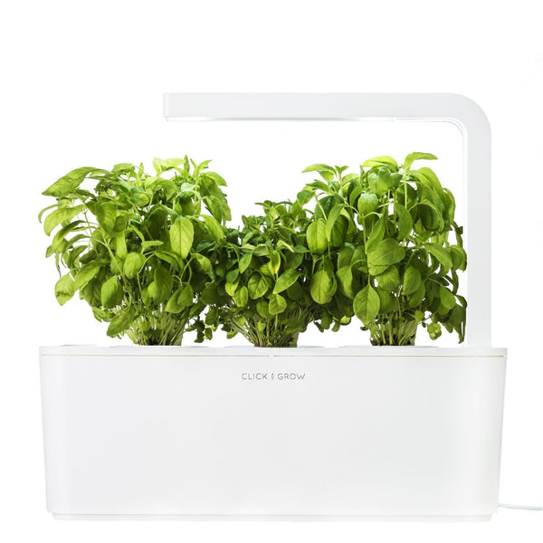 Click & Grow Indoor Smart Herb Garden with 3 Basil Cartridges, White Lid - EarthCitizen  - 1