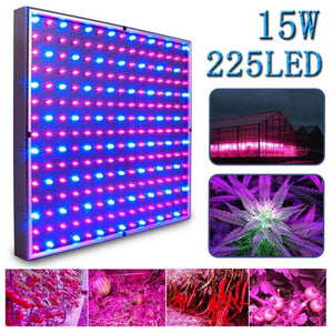 Kaleep LED Grow Light for Red Blue Indoor Garden Greenhouse and Hydroponic Full Spectrum Growing Lamps 15W Hanging Light - EarthCitizen  - 1