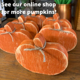 Mini Wood Pumpkin for Fall Tiered Tray Decor