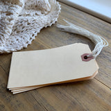 Blank Shipping Tags, Large (10)