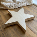 Unfinished Wood Star Shape (1)