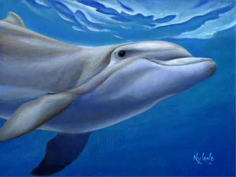 Bottlenose Dolphin in Warm Tropical Sea Oil Painting