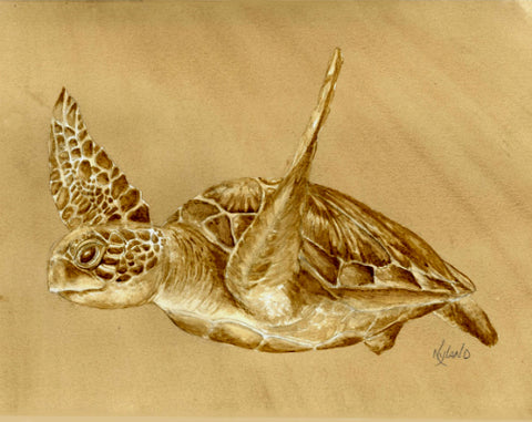 Honu II KC series Coffee Painting Matted Giclee Reproduction, Limited Edition