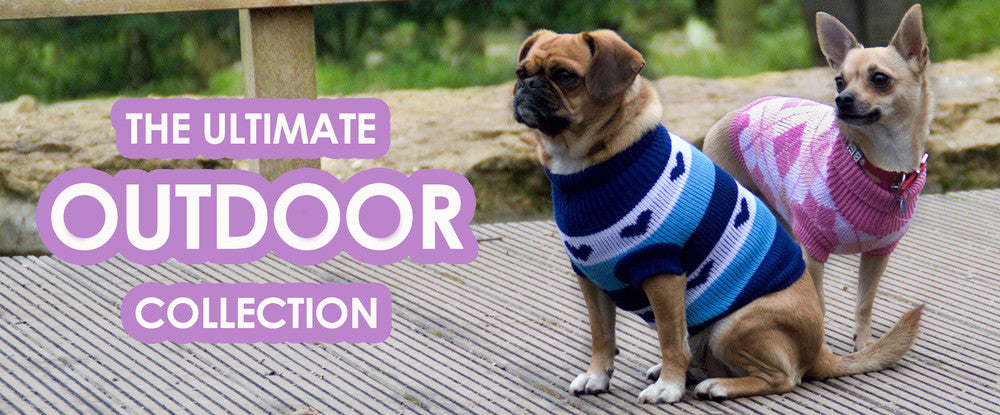 Outdoor Dog Clothing Collection