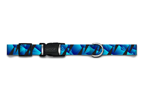APEX | DOG COLLAR