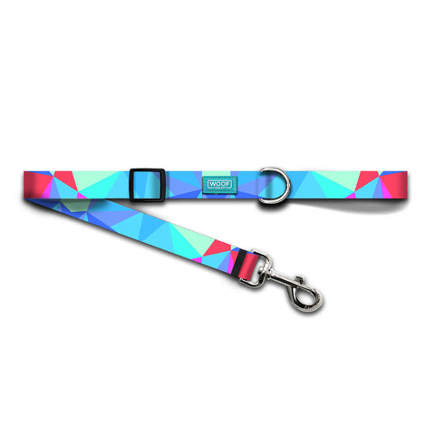 PRISM | DOG LEASH