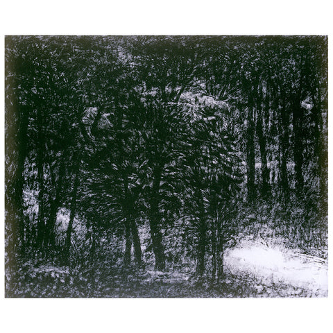 Walk in Woods - II,Vadehra Art Gallery Bookstore,Paramjit Singh - Artisera