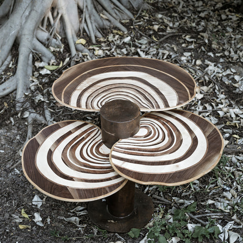 Turkey Tail Walnut Centre Table