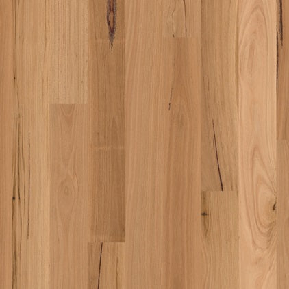 Engineered Blackbutt Matt Brushed