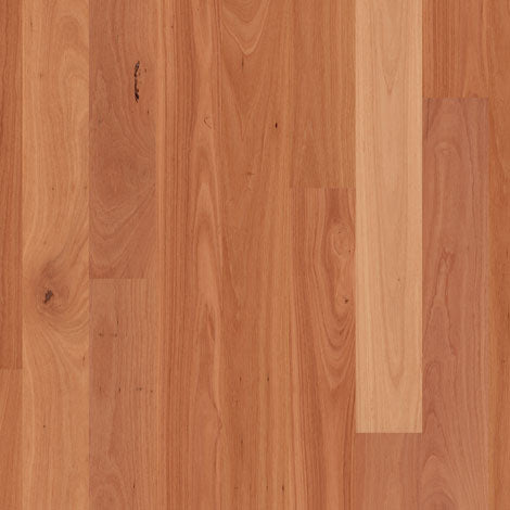 Engineered Sydney Blue Gum 1 strip Satin Finish