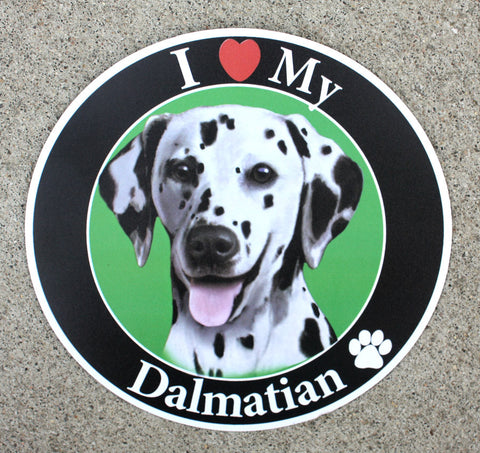 Dalmation Car Magnet