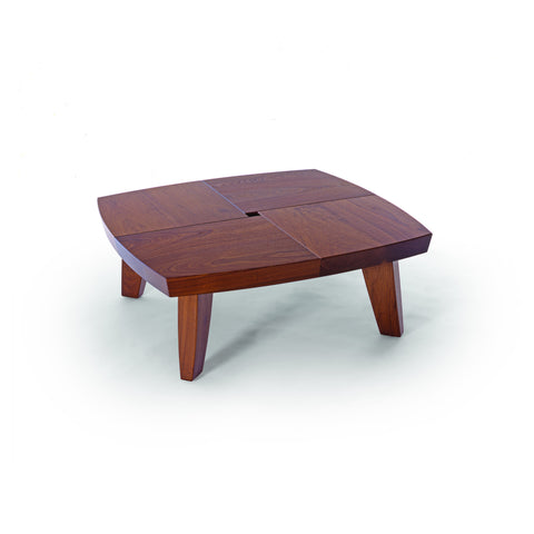 Sea Turtle Coffee Table