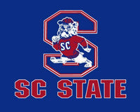 SCSU Car Magnet