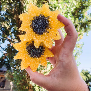 Sunflower - Smelly Jelly