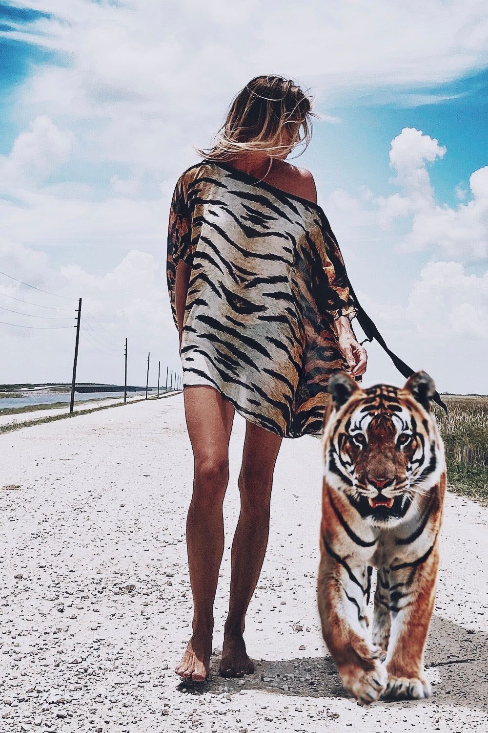 Mariah Mini Dress Tiger stripe
