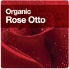 Dr Organic Rose Otto Hair, Body, Skin and Personal Care in Australia