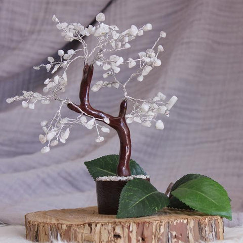 Rainbow Moonstone Crystal Gemstone Tree - Brown Base 22cm - Crystal Healing