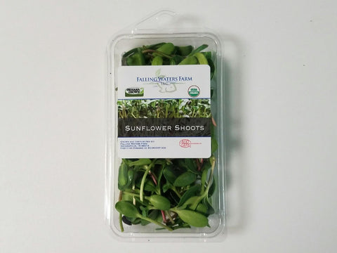 Organic Microgreen - Sunflower Shoots - 1oz