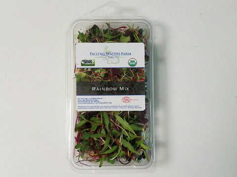 Organic Microgreen - Rainbow Mix - 1oz