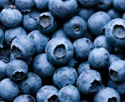 Blueberries - 5 pound box