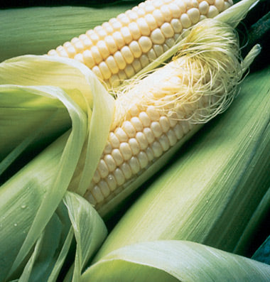 Organic Sweet Corn: Per Ear