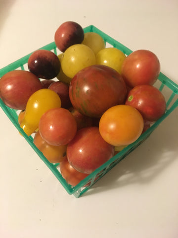 Mixed Pint Cherry Tomatoes