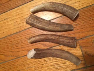 All natural elk antler-small