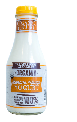 Banana Mango Yogurt Quart