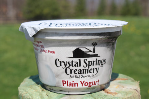 Plain Yogurt  6 oz.