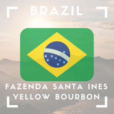 Brazil - Fazenda Santa Ines - Yellow Bourbon Coffee (Whole Bean 12oz)