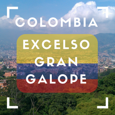 Colombia - Excelso Gran Galope Coffee (Whole Bean 12oz)
