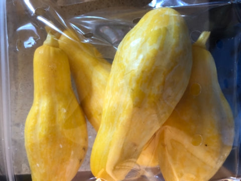 Yellow Squash - 1.5lb bag