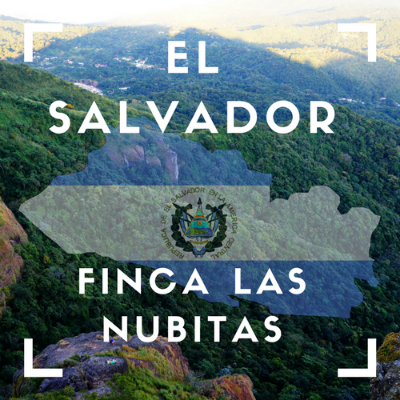 El Salvador- Finca Las Nubitas Coffee (Ground 12oz)