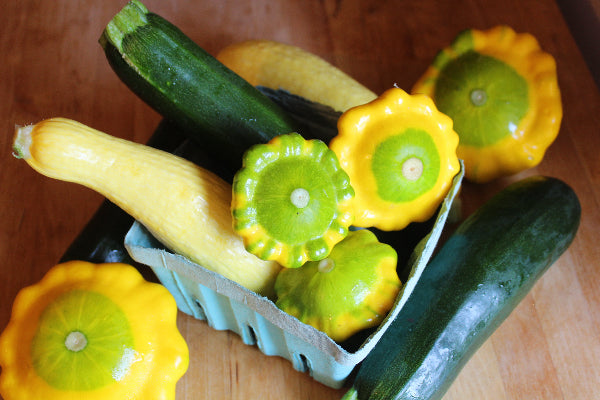 Squash and Zucchini Combo - Certified Organic
