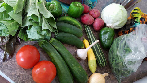 Priest Family Farm CSA Box