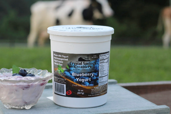Blueberry Yogurt  32 oz.
