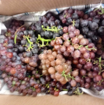 Wild Grape Quartet-1/2 lb