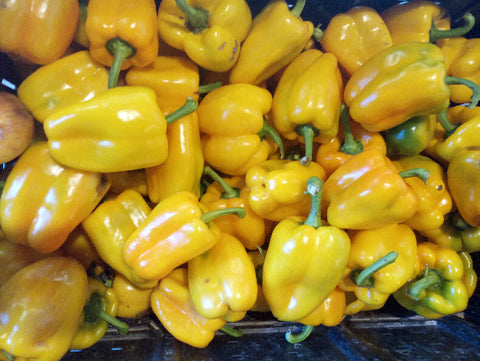 Bell Peppers – Yellow – Qty  2