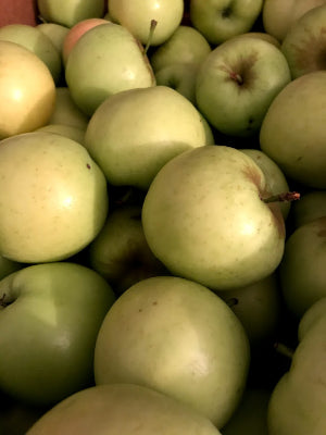 Apples - Ginger Gold 1/4 peck