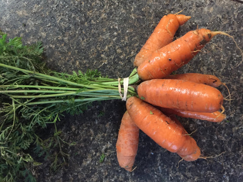 Carrots, orange, tops removed - Certified Organic