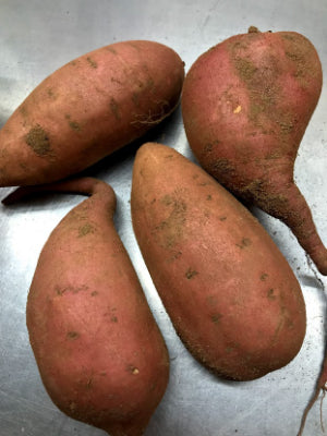 Sweet Potatoes 2+ lb.