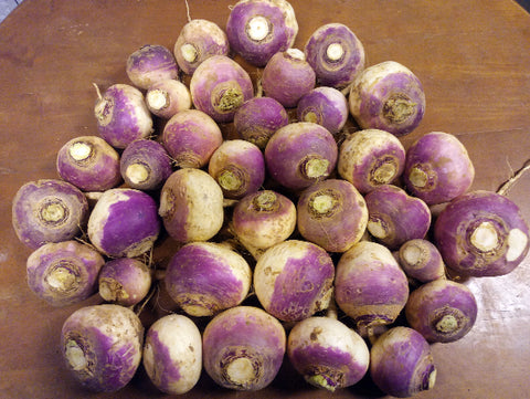 Purple Top Turnips (2 lb)