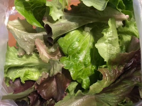 Lettuce Mix - 1lb bag