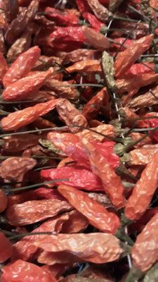 Dried Tabasco Peppers